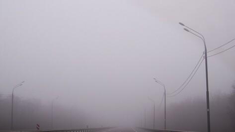 Дорожники предупредили воронежцев о тумане и гололедице