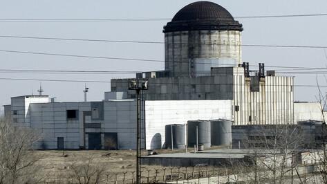 В Воронеже провалился аукцион по сносу замороженной атомной станции