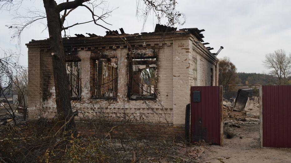Губернатор поручил начать разбор сгоревших домов в павловской Николаевке