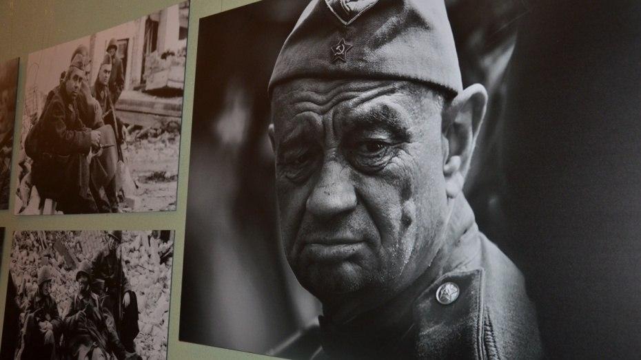 Воронежцы соберут выставку из семейных фотографий военных лет
