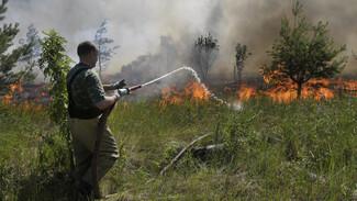 В Воронежской области за поджигателями проследят беспилотники