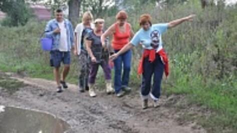 В Воронеже запустили автобусы для дачников
