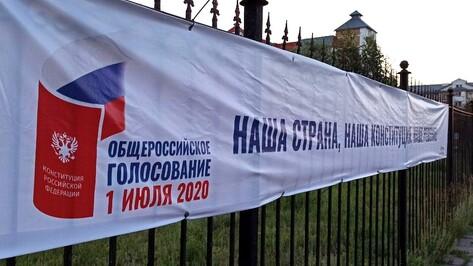Воронежские «Волонтеры Конституции» начали информационную работу