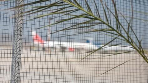 Воронежский Роспотребнадзор открыл горячую линию в связи с отказом от Турции