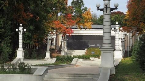Воронежцы попросили власти проложить веломаршрут от Центрального парка до набережной