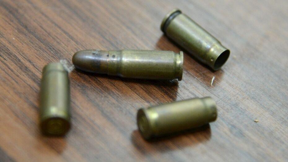 В рамонском селе пенсионер незаконно хранил дома 45 патронов и более 200 г пороха