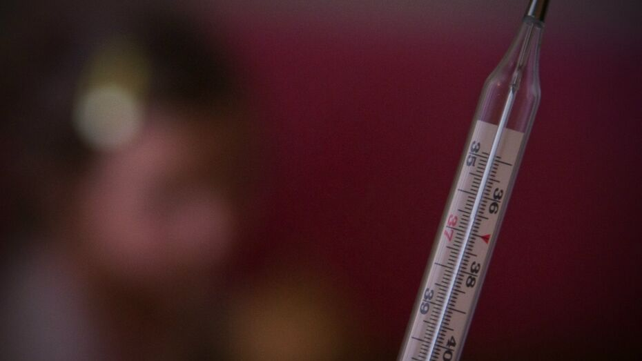 В Воронежской области грипп пошел на спад