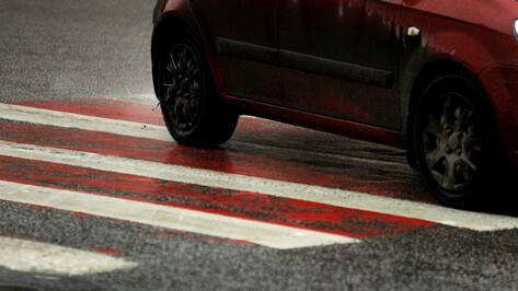 Полицейские попросили помощи в поисках сбившего воронежскую пенсионерку водителя