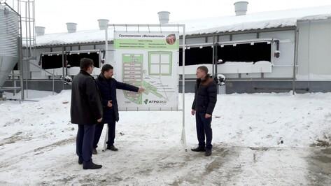 ГК «Агроэко» открыла в Воронежской области свинокомплекс на 43 тыс голов