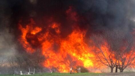 Пожароопасный сезон начался в Воронежской области