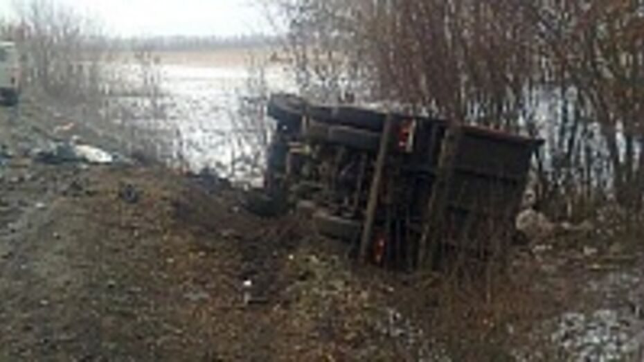 В Лискинском районе столкнулись «КамАЗ» и «Ауди»