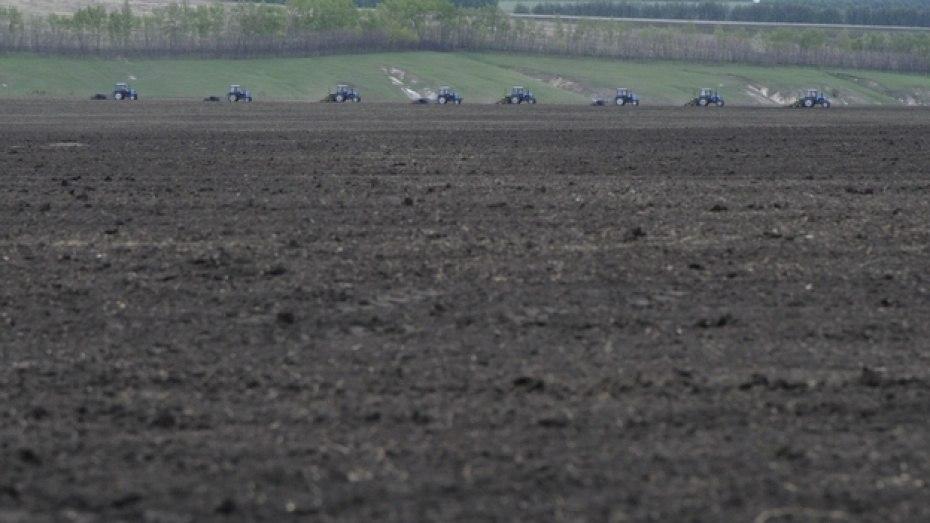 Воронежские аграрии засеют яровыми 1,7 млн га