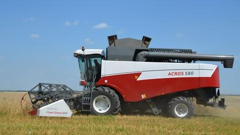 В Верхнехавском районе зерновые уберут почти на 40 тыс га