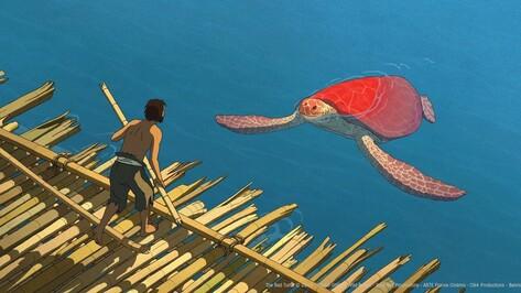 Большой фестиваль мультфильмов в Воронеже откроет претендующая на «Оскар» «Красная черепаха»