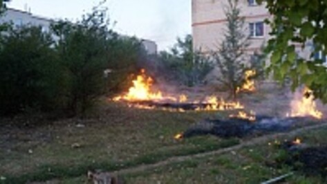 Верхнемамонца оштрафовали за поджог мусора около многоквартирного дома