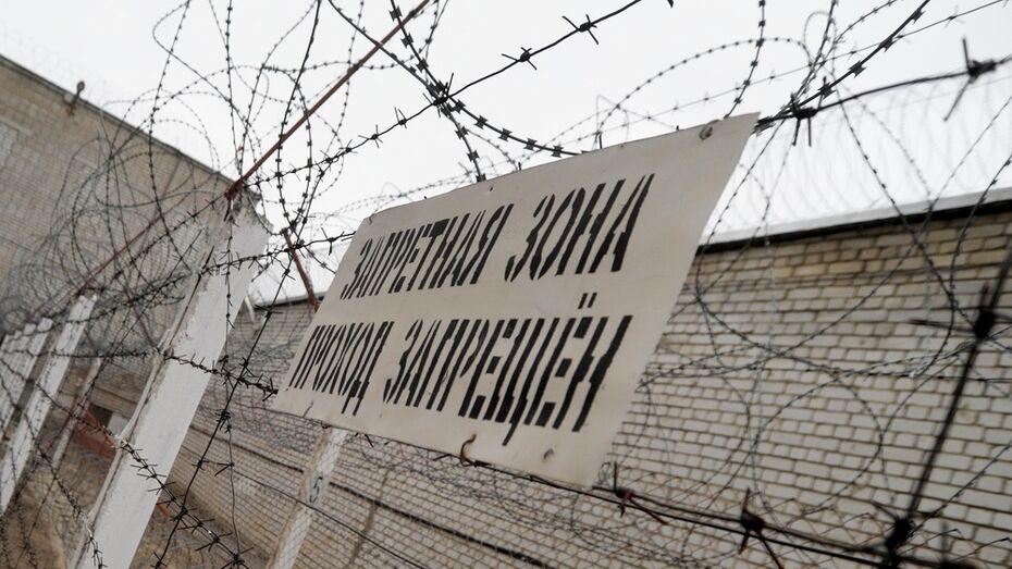 В Воронежской области суд арестовал 20-летнего вора за убийство стариков