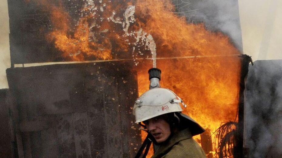 В Борисоглебске при пожаре в деревянном доме погиб квартирант