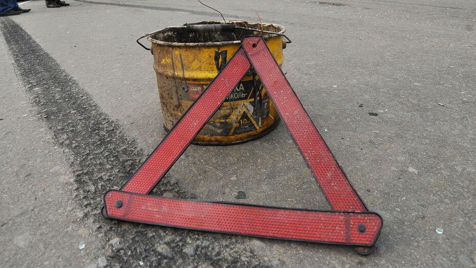 В ДТП в Воронежской области пострадали 7 пассажиров микроавтобуса
