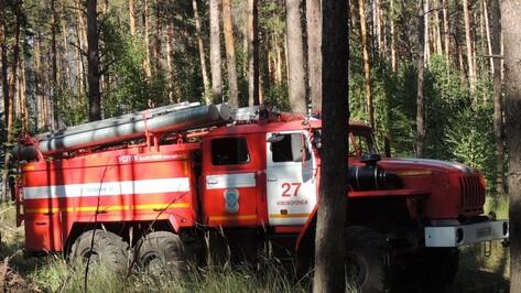 В Воронеже из-за жары ввели IV класс пожарной опасности
