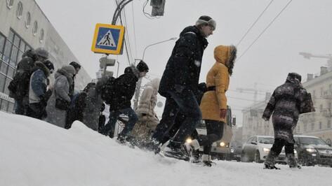 Гид РИА «Воронеж»: куда сходить 17 и 18 декабря