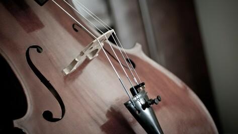 Воронежцев позвали на бесплатный концерт виолончельной музыки