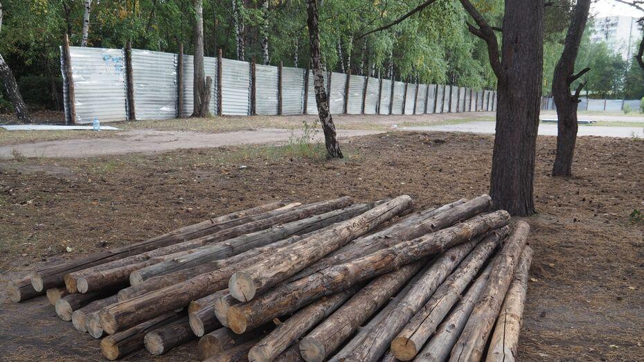Воронежцы предложат властям альтернативные варианты благоустройства «Танаиса»