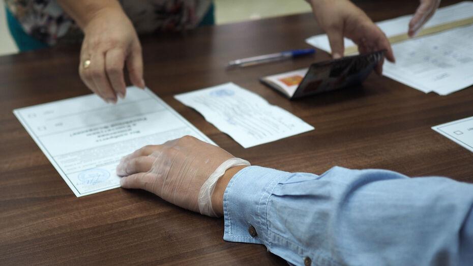 Видеонаблюдение применят на 673 избирательных участках Воронежской области