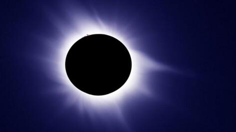Астрономы научат воронежцев правильно наблюдать солнечное затмение