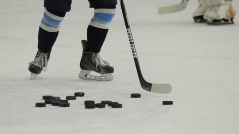 Хоккейная «Россошь» победила «Зеленоград» в гостях