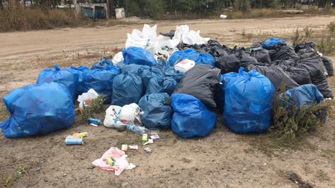 После воронежской экоакции на улицах остались мешки с мусором