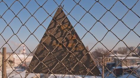 В Воронежской области подорожает проезд в электричках с 8 января