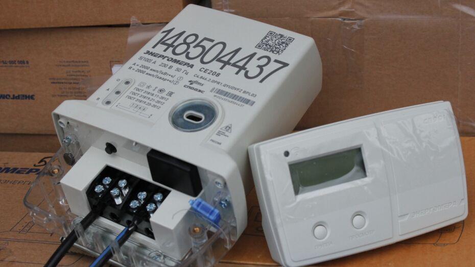 Более 20 тыс «умных» электросчетчиков установят в Воронежской области до конца 2020 года
