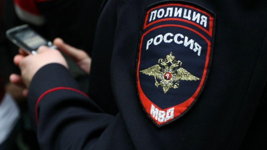Суд отправил жителя Воронежской области в колонию за оскорбление полицейского
