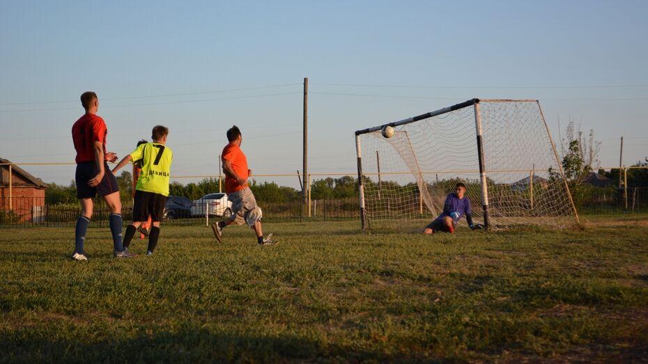 В Острогожском районе общественники оборудовали футбольное поле