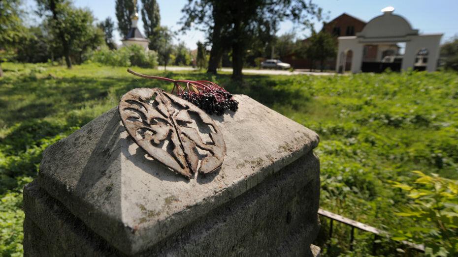 Волонтеры расчистят Терновое кладбище в Воронеже