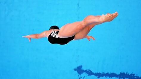 Воронежские прыгуны в воду поспорили за Кубок области