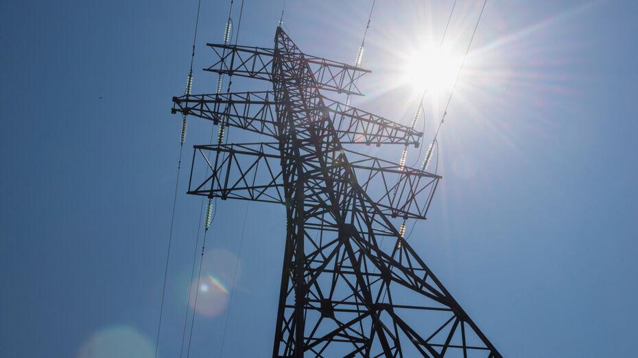 Эксперты Воронежэнерго перед праздниками напомнили о правилах электробезопасности