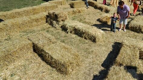На выставке «Воронеж – сад» установят съемочный павильон из соломы