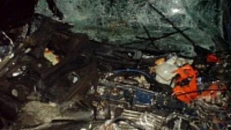 В ДТП с «Камазом» в Воронежской области погибли два человека