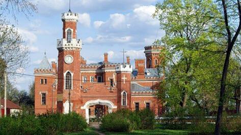 Воронежских добровольцев просят прибраться в замке принцессы Ольденбургской
