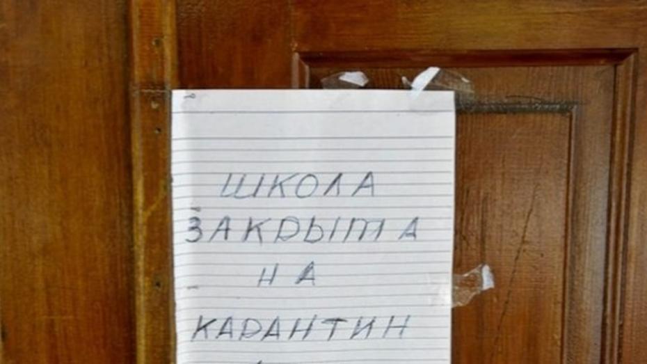 Число школ на карантине по гриппу в Воронеже сократилось до трех