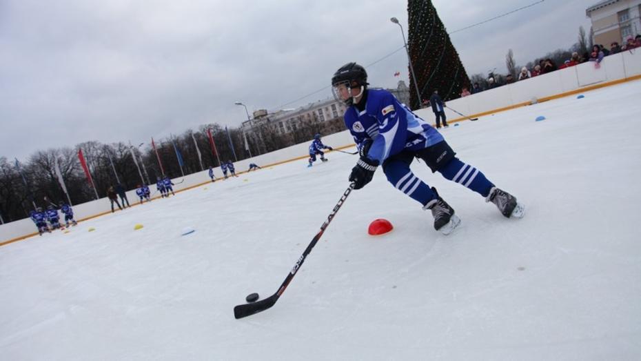 Помощник президента России Игорь Левитин позаботится о воронежском льде