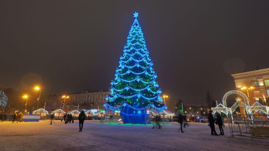 Губернатор назвал главную елку Воронежа одной из лучших в стране
