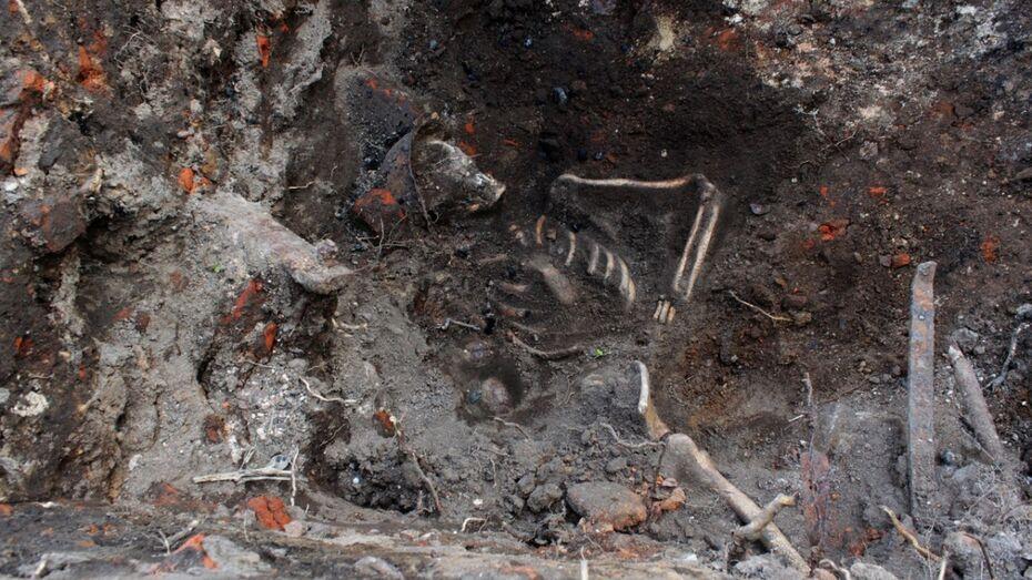 Воронежские строители у  Чижовского плацдарма нашли останки красноармейца