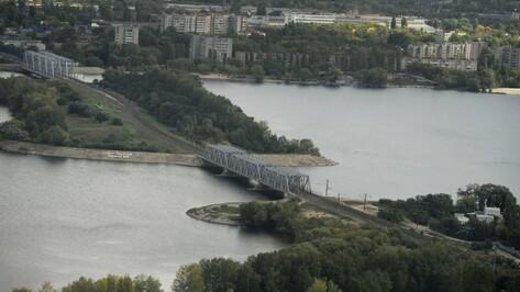 Воронежцев пригласили на очистку прибрежной территории водохранилища