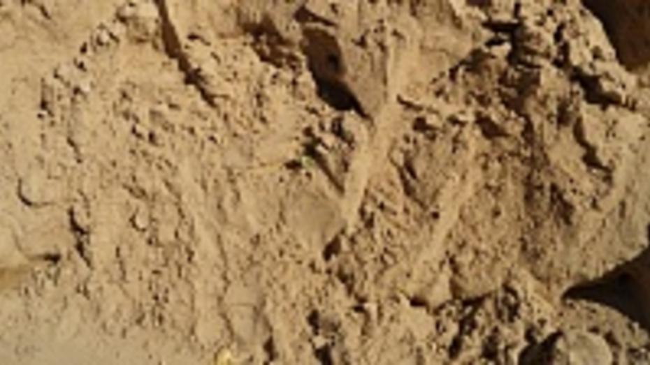 В Лискинском районе пресекли незаконную разработку песчаного карьера