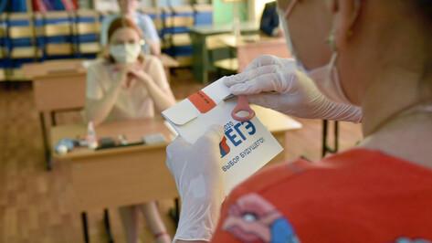 В Воронежской области 11 человек получили 100 баллов на ЕГЭ по литературе