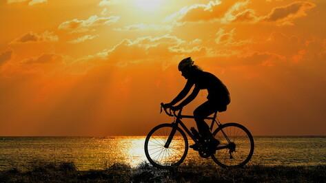Воронежец проедет 700 км на велосипеде в поддержку донорства костного мозга