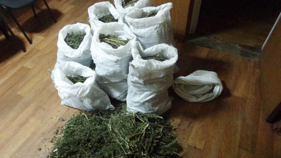 У 3 жителей Лискинского района наркополиция нашла 7 кг марихуаны