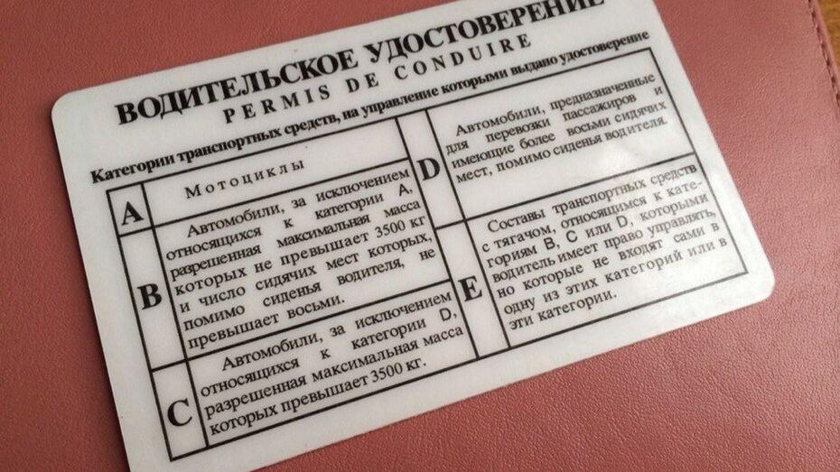 В Госдуме поддержали досрочный возврат прав за «хорошее поведение